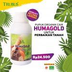 Humagold_1