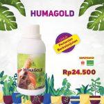 Humagold_4